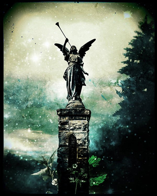 ANGELFINAL